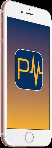 PayPulse Phone